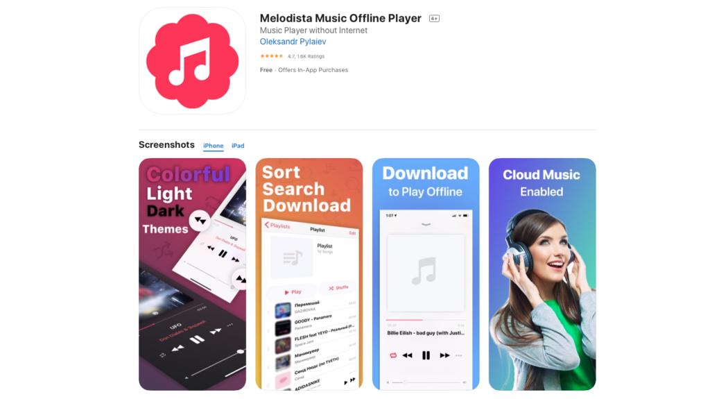 Best iOS music offline player